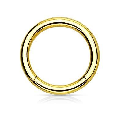 Segmentring, Titan - vergoldet [10 Stk.]